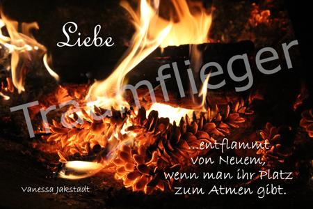 Feuerzapfen-Liebe