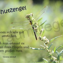 Libelle Schutzengel